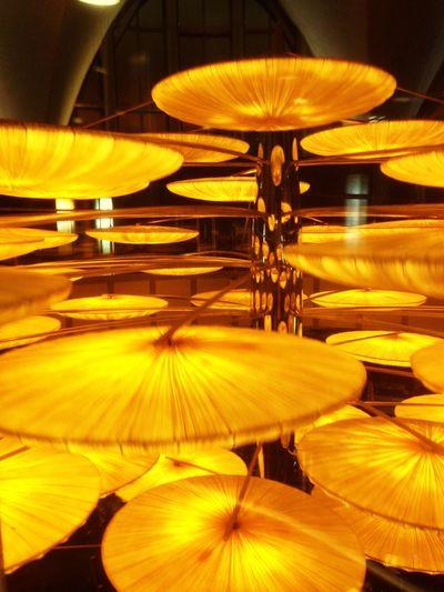 Lampara de Medusa Oceanographic Valencia Medusa Lamp Lampara Style Design Artist Diseño