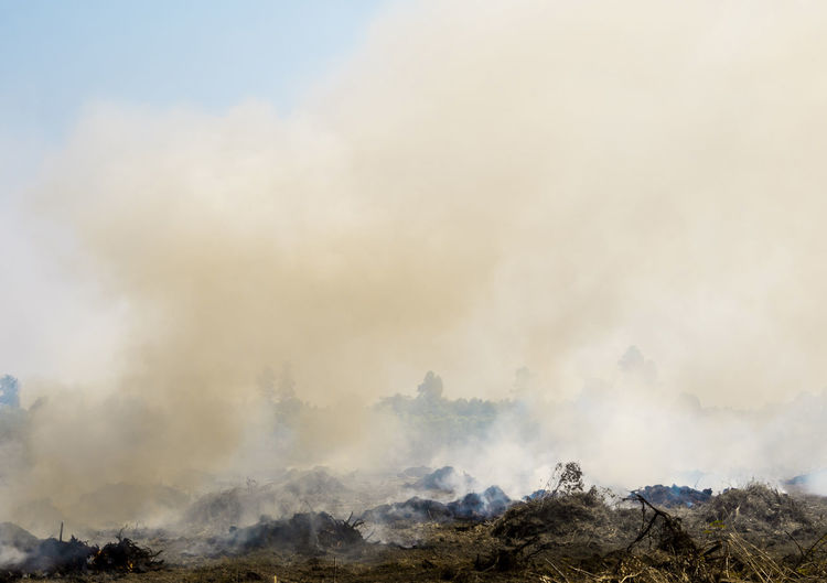Dense dust and smoke from burning stubble in agricultural areas along the road after harvest