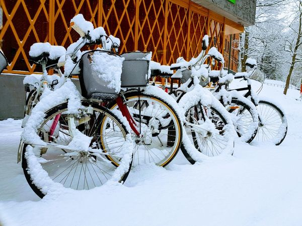 Snow arrives in Sweden 😀 Snow Winter Bicycle Winter Outdoors Sweden North Cold
