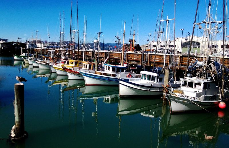 boats San Francisco Sea Water Picturesque
