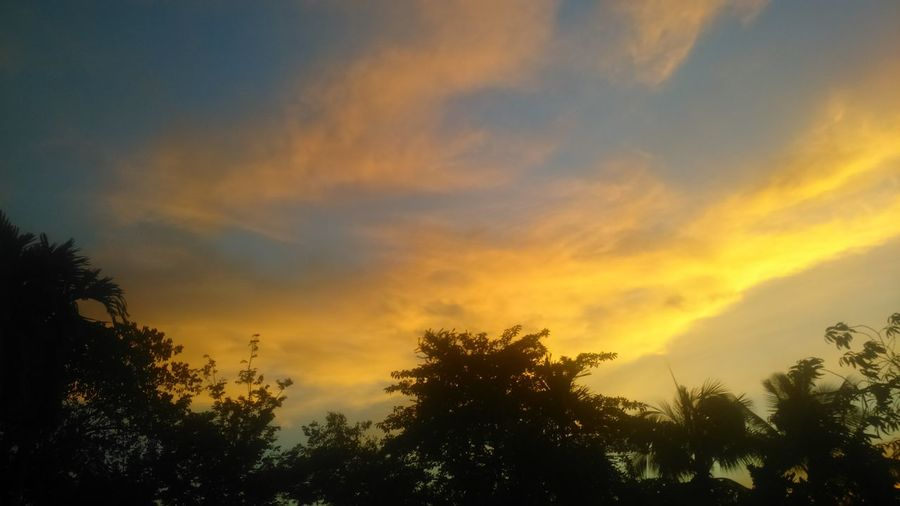 shining cloudy.evening.nature.evening of life. .