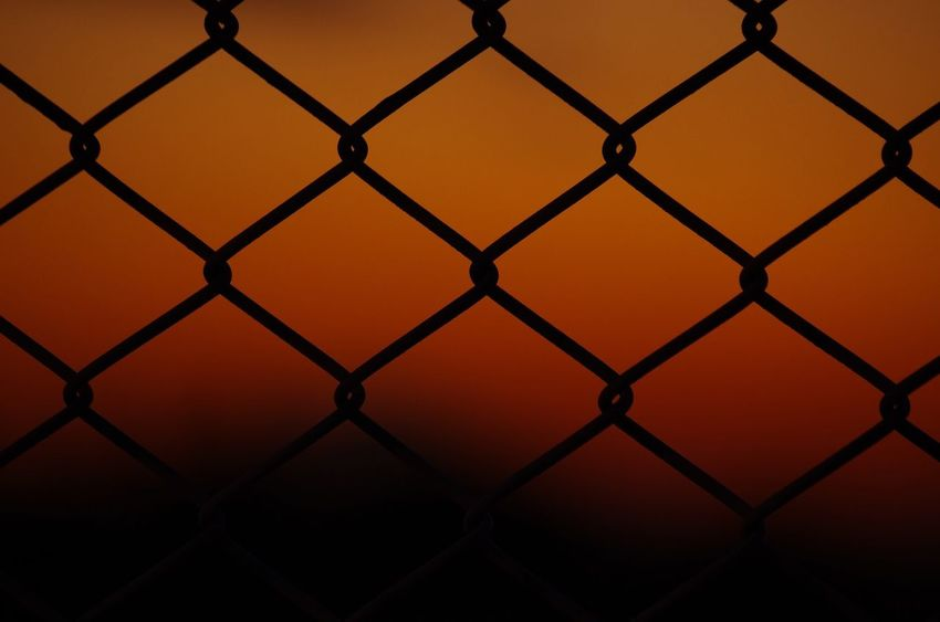 Sunset Wire Mesh Fence