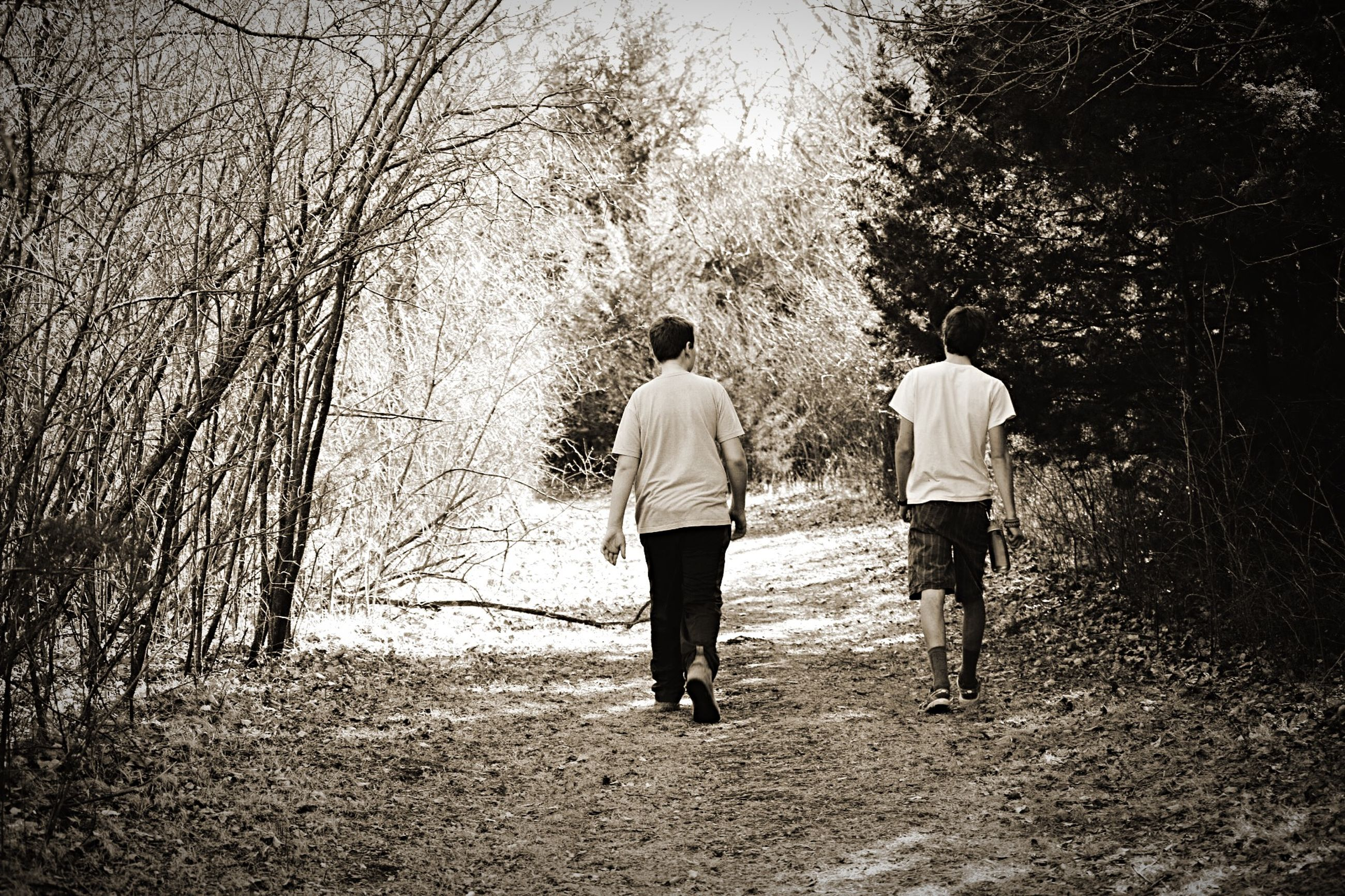 rear view, full length, walking, tree, lifestyles, men, leisure activity, person, togetherness, casual clothing, the way forward, standing, footpath, boys, nature, bonding, outdoors