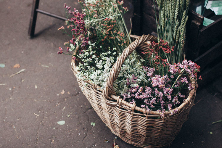 High angle view of flowers in basket on land