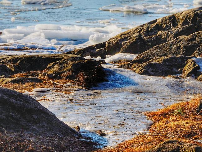 Nature Sunlight Day Beach Outdoors No People Beauty In Nature Close-up Winter Nature Outside Beautiful Nature Sea Beauty In Nature Nature Frozen Water Ice Cold Temperature
