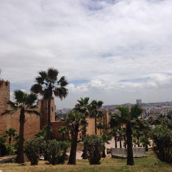 Travelling Iphonephotoacademy IPhone Rabat Morocco