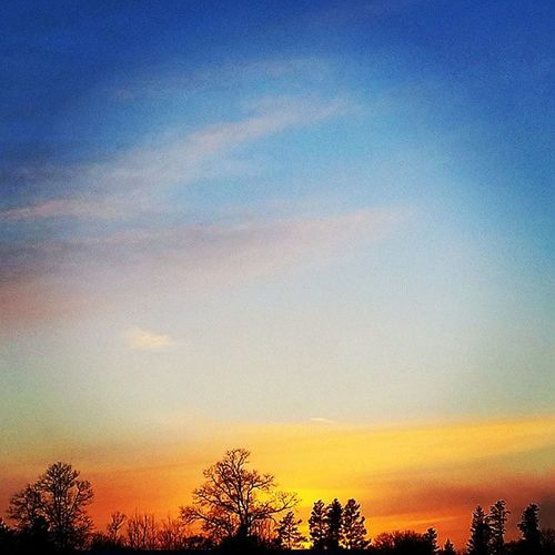Godsbeauty Godscountry Sunset Sunsetstalker Nature Ilovesunrisesandsunsets Hugging A Tree Tree Silhouette Color Explosion Sunset #sun #clouds #skylovers #sky #nature #beautifulinnature #naturalbeauty #photography #landscape