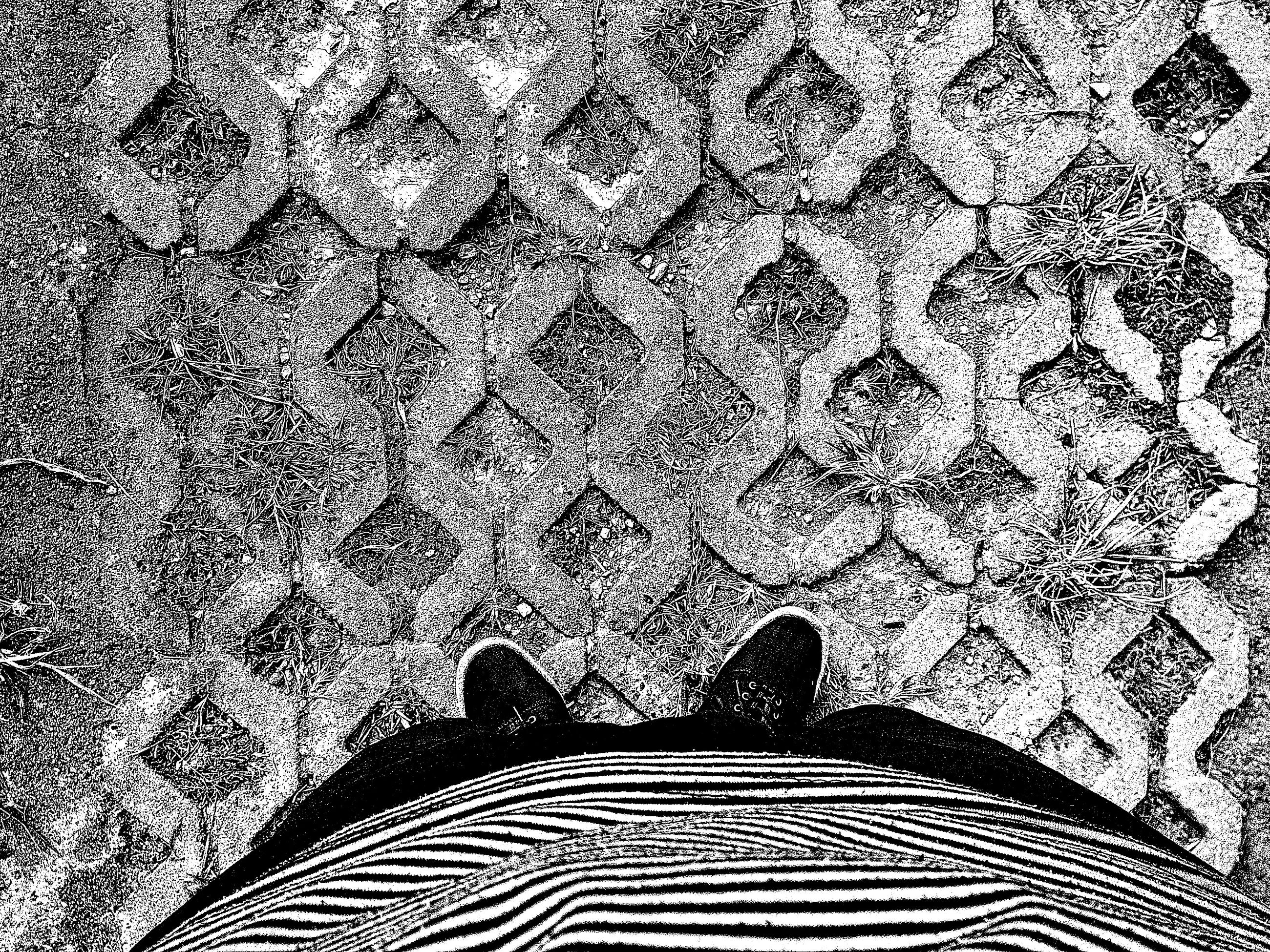 pattern, design, high angle view, full frame, shadow, sunlight, indoors, textured, day, backgrounds, wall - building feature, steps, repetition, no people, low angle view, cobblestone, floral pattern, nature