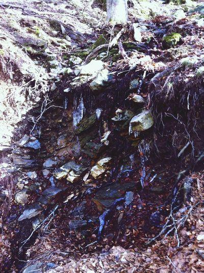 Agua Of Canigou Mont Canigou