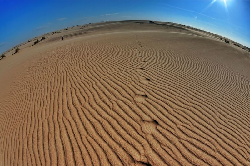 on that Perfect Rippled Ground - we walked with our eyes lost - into each others Tracks - meeting up as parallels do - at infinity - and now my heart bleeds - for the storm we raised - and had no courage to engage with --- @ Imperial Dunes, CA