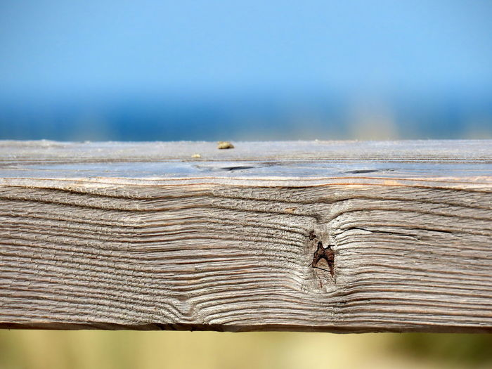 Close-up of insect on wood against sea