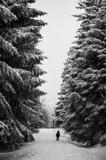 When I grow up.. Beauty In Nature Blackandwhite Boy Cold Temperature Contrast Dark Darkness And Light Day Dramatic Forest Landscape Nature One Person Only Men Outdoors People Scenics Snow Tall The Way Forward Tranquility Tree Winter Young Shades Of Winter