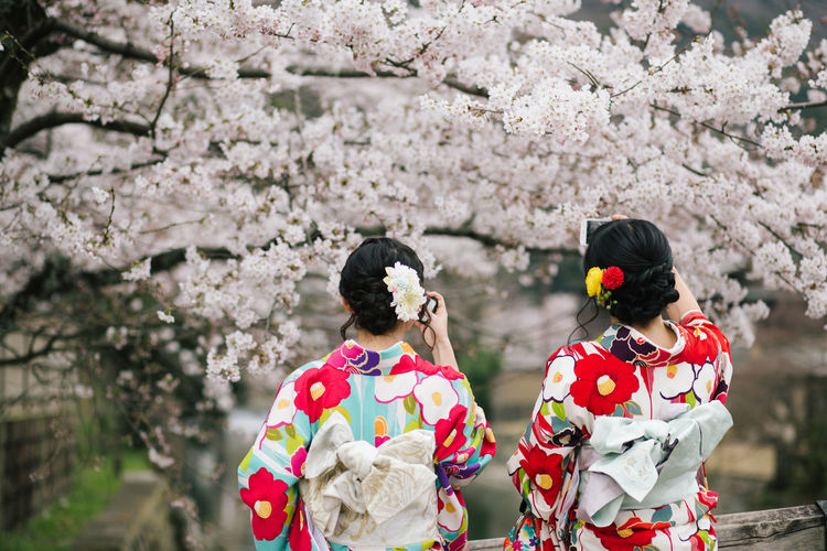 Early April, it's time to enjoy the beauty of sakura and kimono in Kyoto. Two Japanese girls in kimino dresses take photo of sakura tree. Arashiyama Beauty Cherry Blossom Cherry Blossoms Cultures EyeEm Japan Japanese  Kimono Kyoto Period Costume Sakura Sakura2017 Taking Photos Traditional Clothing Women The Secret Spaces TCPM Break The Mold Unrecognizable Person The Great Outdoors - 2017 EyeEm Awards Neighborhood Map Live For The Story The Portraitist - 2017 EyeEm Awards Place Of Heart Connected By Travel An Eye For Travel Focus On The Story