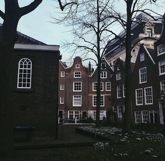 Exterior of buildings in town