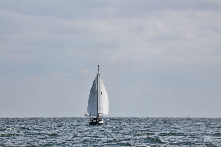 Baltic Sea Blue Boat Day Horizon Over Water Mast Meer Nature Ostsee Outdoors Sailboat Sailing Sailing Ship Sea Segelboot Segeln Sky Water Waterfront Wirsindinsel