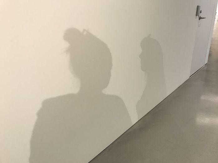 Shadow Wall -