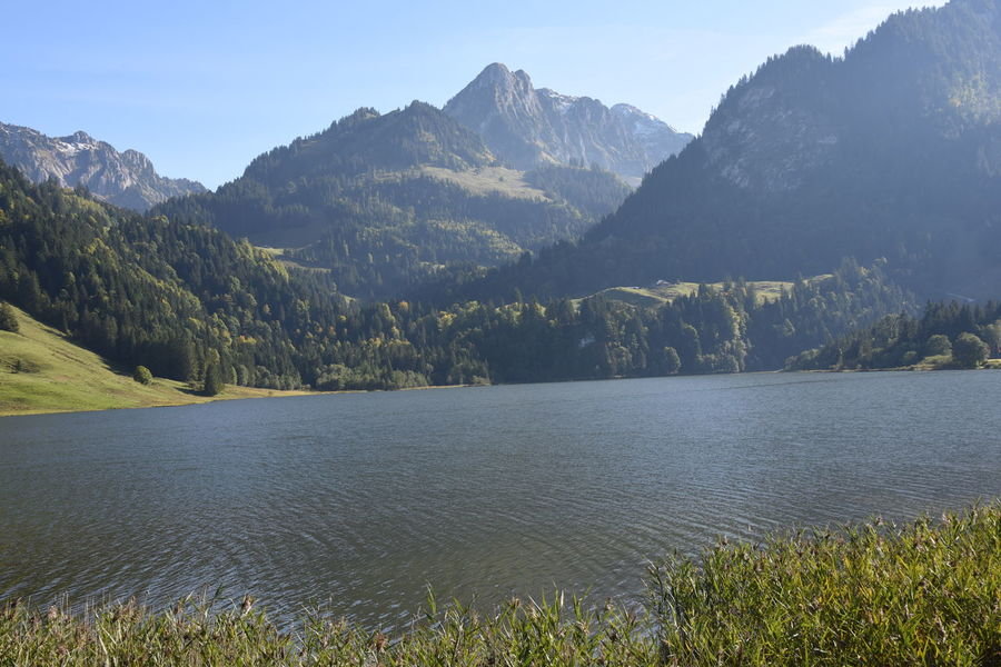 Berge Freiburg Im Üechtland Fribourg Landschaft Bergsee Lake Landscape Mountains Schwarzsee
