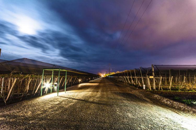 Road By Illuminated Bridge Against Sky At Night