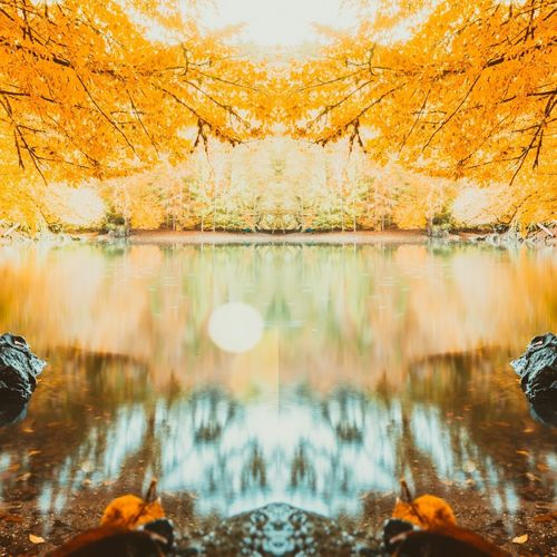 Autumn landscape view in Turkey Turkey Yedigoller Lake View Water Yellow Leaves Leaf Sky EyeEm Selects Scenics Outdoors Lake Water No People Tranquil Scene Forest Day Mountain Sky