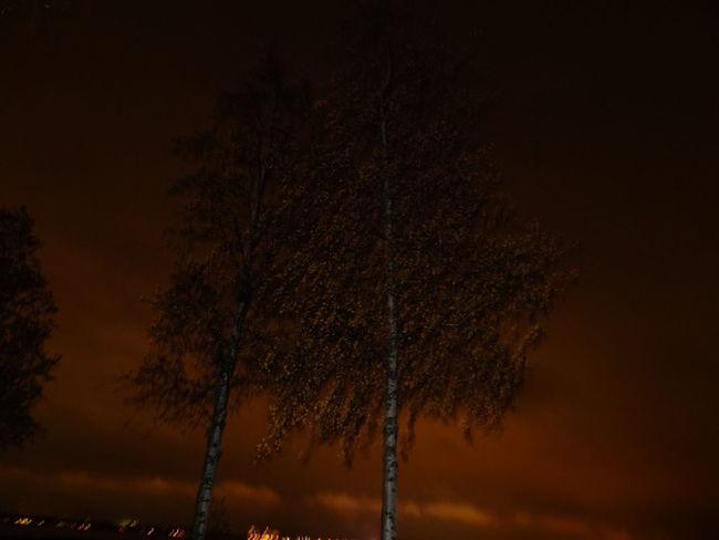 nightwiew in luleå Taking Photos Fresh Air Beautiful Darkness Night View