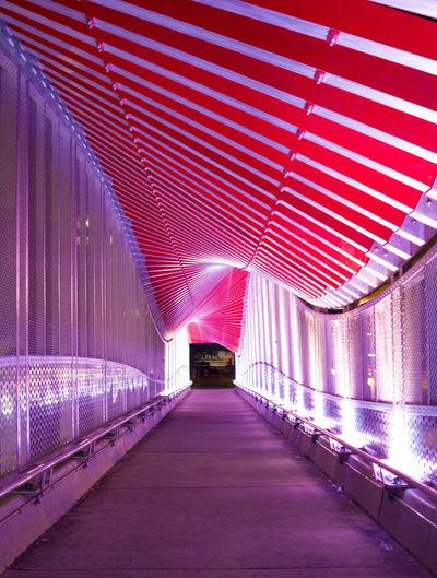 The Way Forward Built Structure Architecture Covered Bridge No People Bridge Light Neon Pink Purple Gainesville Florida Gainesville Fl