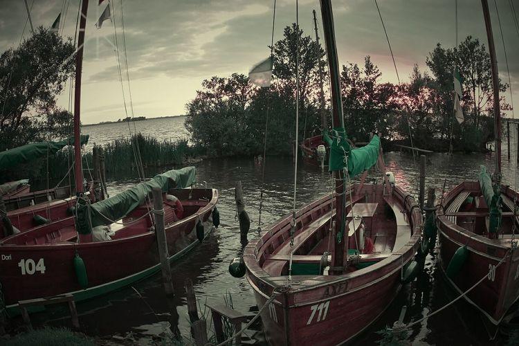 Gondola - Traditional Boat Water Nautical Vessel Tree Moored Sky