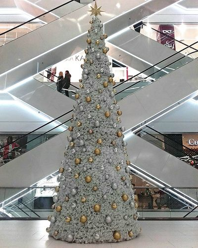 Christmas Tree Shoping Architecture Built Structure Famous Place Tall - High