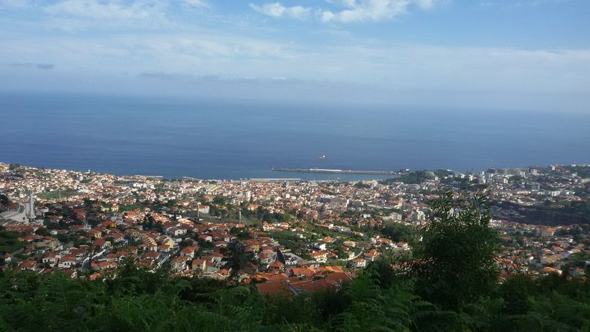 Cityscape High Angle View Town Aerial View Landscape Outdoors Community No People Horizon Over Water Scenics TripAdvisor Madeira Island Tranquility Beauty In Nature Madeira Islands, Portugal Laurisilva Forest Vulcanic Landscape Funchal Madeira Funchal Funchal city