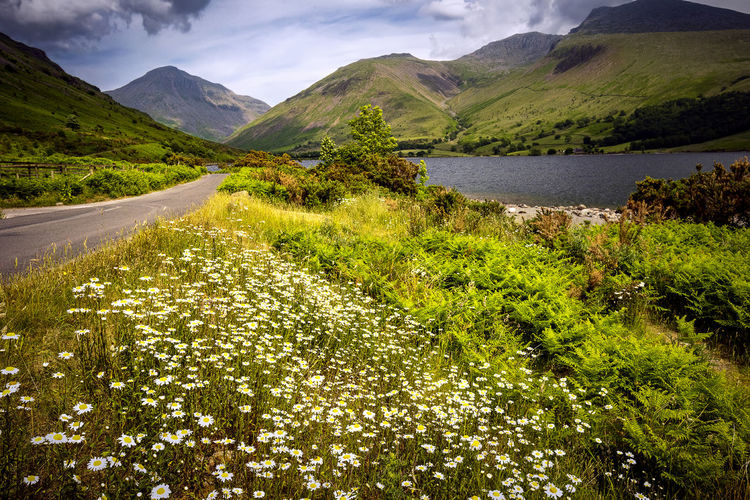 1266 - 20180608 Wast Water 044 Wast Water Wastwater Mountain Water Scenics - Nature Beauty In Nature Plant Tranquil Scene Tranquility No People Nature Mountain Range Green Color Sky Lake Non-urban Scene Day Road Growth Tree Outdoors