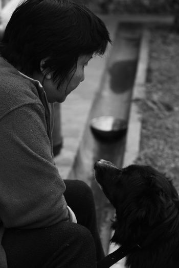 Dog looking at depressed woman sitting outdoors