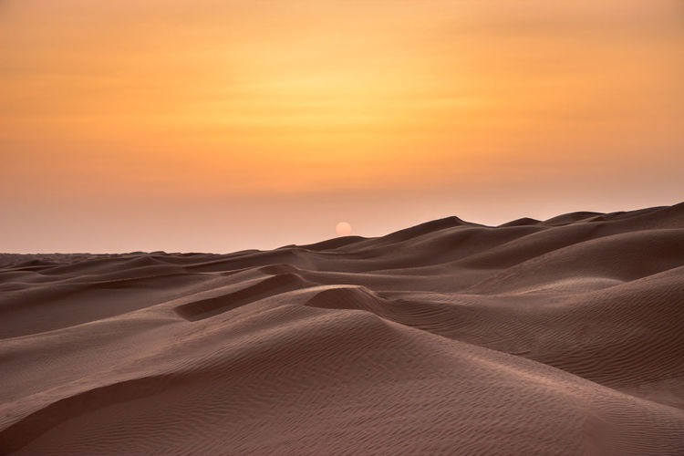 Incredibile sunset, Sahara Desert Tunisia Landscape Scenics - Nature Desert Sand Dune Sand Sunset Land Climate Environment Arid Climate Beauty In Nature Sky Tranquility Tranquil Scene Non-urban Scene Nature No People Extreme Terrain Remote Idyllic Outdoors Desert Sahara Sun Dunes 2018 In One Photograph My Best Photo