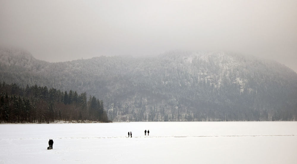 Cold Temperature Frozen Outdoors Scenics Snow Winter