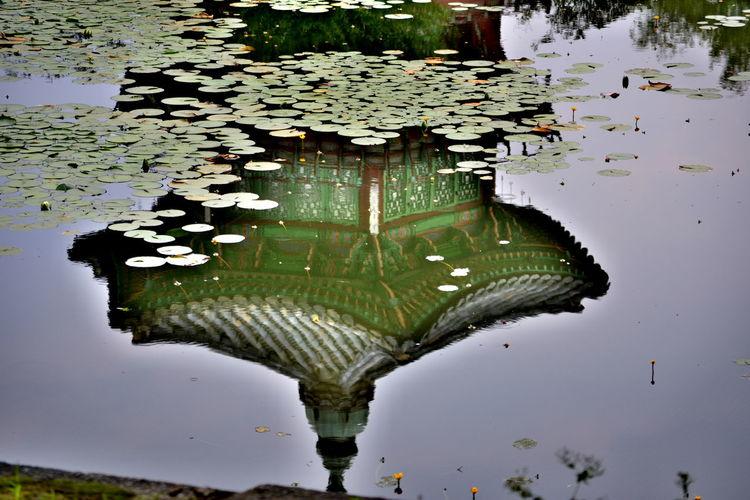 Reflection Asain Architechture HDR Korea Nature Photography Palace Upright WaterPlant