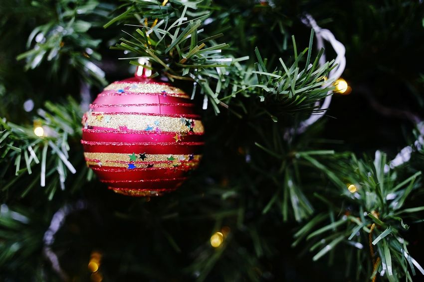 Christmas Christmas Tree Christmas Decoration Decoration Celebration Tradition Christmas Ornament Vacations Hanging Close-up Illuminated Holiday - Event Christmas Lights Night No People Celebration Event Indoors  Tree Bauble