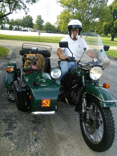 Meet Coco & Nick, a couple of the local bikers! Coco don't really care for the goggles but, she wears them! Coco had a blast at the Overland Dog Park with her friend Molly. Now she's gonna cruise home & cool off. People And Places Transportation Land Vehicle Mode Of Transport Tree Full Length Casual Clothing Young Adult Person Day Outdoors Parked Green Color Side Car Bikerlife Motorcycle Dog Motorcycle Photography Motorcyclebuddies Dogs Life Adapted To The City