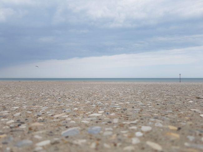 Dymchurch Seafront Photography 2018 2018 2018 EyeEm 2018 Year Beach Life Beach Photography Dymchurch Dymchurch Beach England, UK Kent Travel Travel Photography United Kingdom Beach Beachphotography Day Land Nature Outdoor Outdoor Photography Outdoors Outdoors❤ Photography Pictures Sand Travelphotography
