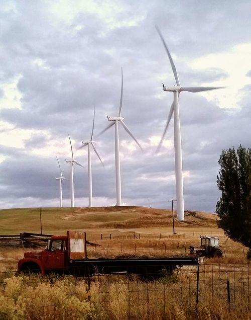 Wind Turbine Landscape Rural Scene Wind Power Environmental Conservation Fuel And Power Generation Cloud Alternative Energy Windmill Renewable Energy Cloud - Sky Solitude Sky Tranquility Tranquil Scene Cloudscape Field Scenics Nature Lifestyles Agriculture Farm Farm Equipment