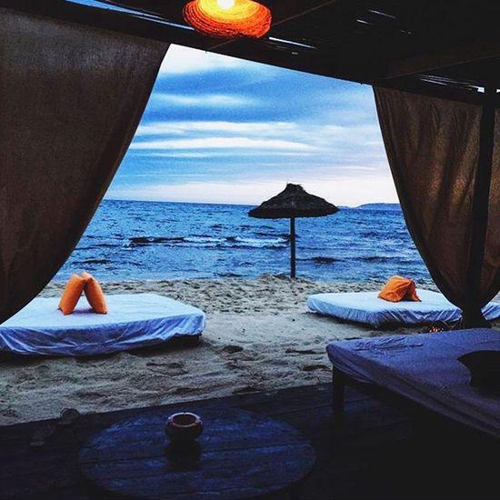 Adventure Club Beach Sea Beachparty Fun View Look Up And Thrive Fine Art Photography Beautiful Beauty