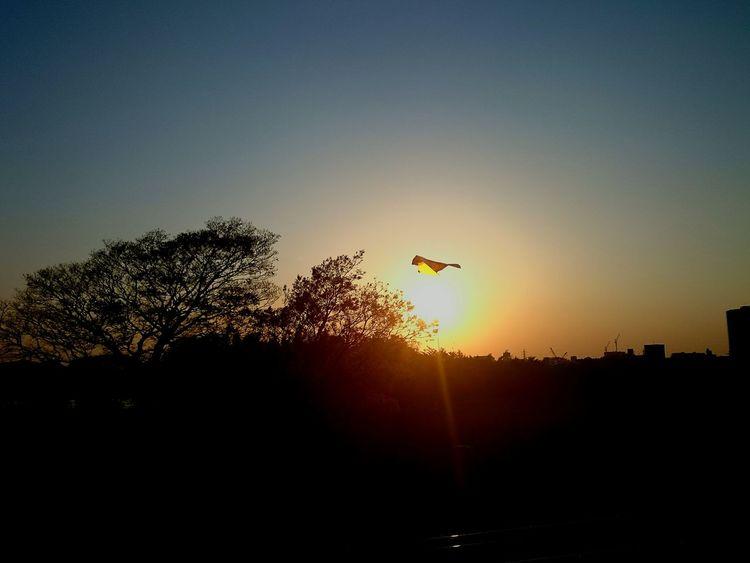凧 をあげてる 子供 がいた…… 河原 夕焼け 太陽