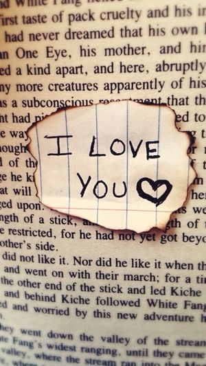 Burnt Notebook Paper Writing Book Burntnotebookpaper Pen Iloveyou Youloveme Words Bookpage Focused
