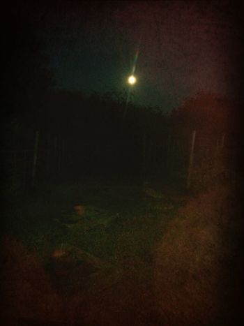 Moonlight Winding Down Mygarden:) Nightphotography