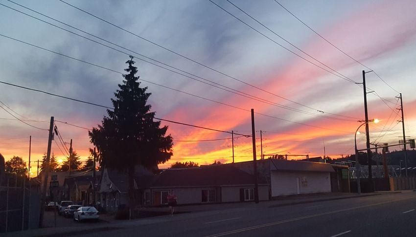 sunset in kelso, washington Sky Sunset Outdoors