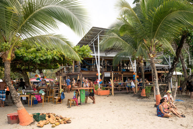 Costa Rica Beach Large Group Of People Leisure Activity Outdoors Palm Tree People Relaxation Sand Travel Destinations Tropical Climate Vacations