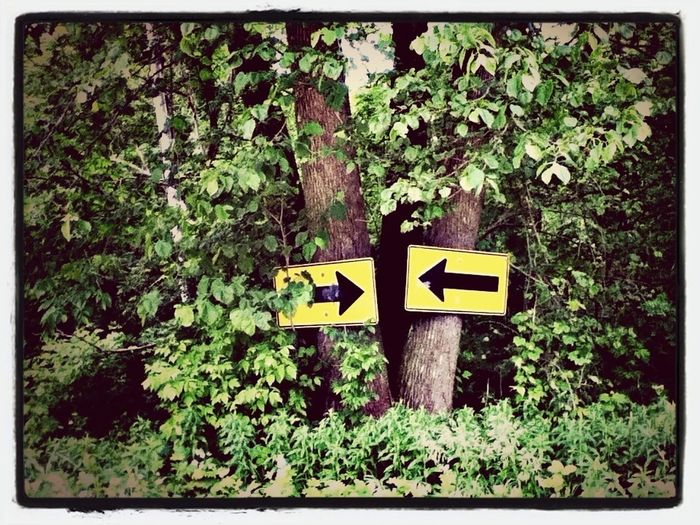 Signs The Path Less Traveled By Pointer Footwear