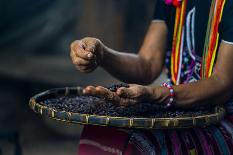 Hill tribe women sorting coffee beans. woman selecting roasted coffee bean.