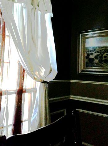 Window Windowcollection Interior Views Softlight Photography Whitecurtains Favorite Rincóndemálaga EyeEm Gallery