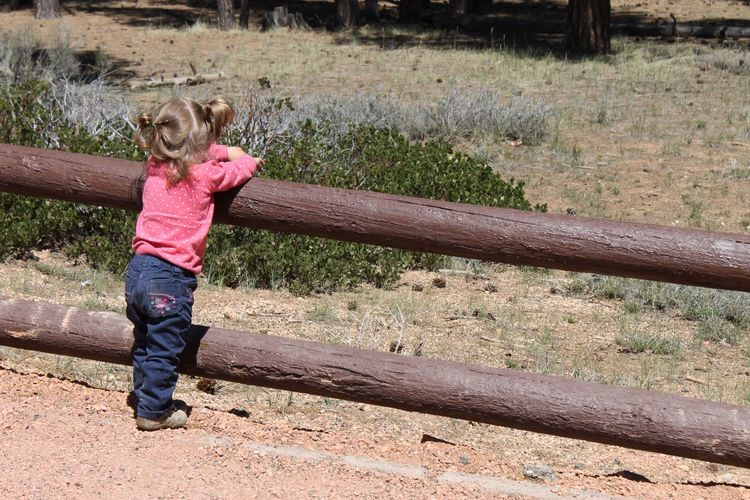 Toddler contemplation Bryce Canyon National Park Child Children Only Childhood Girls One Girl Only Rear View Full Length Outdoors