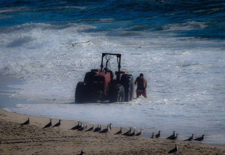 Sea Water Wave Men Nature Outdoors Adventure Nautical Vessel Real People Beach Day Beauty In Nature People Seagulls Sea And Sky Fisherman Tractor Sand Portugal Boat Man And The Sea