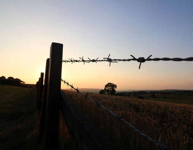 Summer sunsets in Yorkshire Safety Protection Fence Security Landscape Barbed Wire Clear Sky Tranquil Scene Tranquility Field Wooden Post Scenics Remote Sky Beauty In Nature Focus On Foreground Nature Chainlink Fence Non-urban Scene Solitude