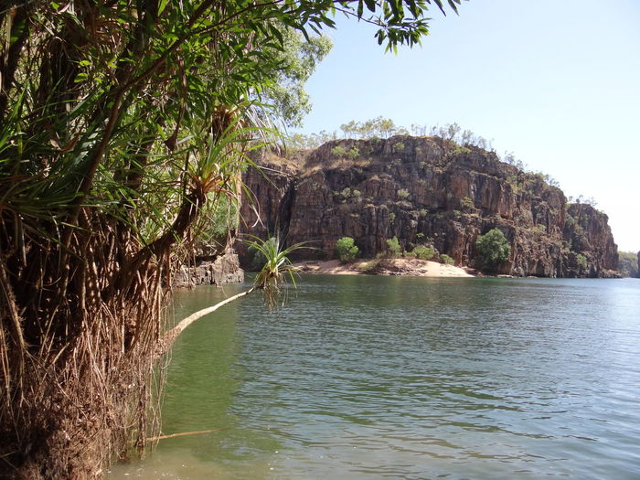 Butterfly Gorge, Nitmiluk National Park, Katherine, Northern Territory, Australia Australia Australian Australian Landscape Kakadu National Park Katherine Katherine Gorge Katherine NT Australia Nitmiluk National Park Northern Territory Beauty In Nature Butterfly Gorge Day Environment Forest Growth Katherine National Park Land Mountain Nature Nitmiluk No People Outdoors Plant Scenics - Nature Sea Sky Tranquil Scene Tranquility Tree Water Waterfront